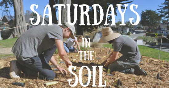 Saturdays in the Soil.png