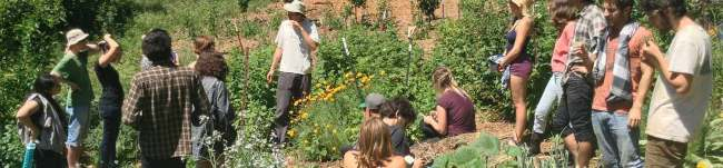 GardenHerbalism-1500w.jpg