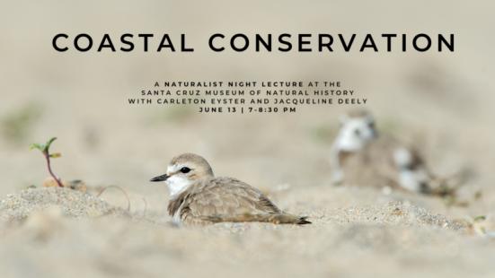 Naturalist-Night-Jun-2019-Coastal-Conservation-Banner-768x432.png