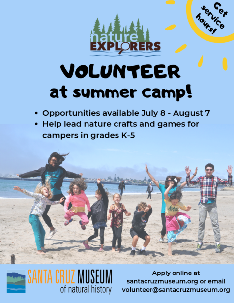 Volunteer at summer camp!.png