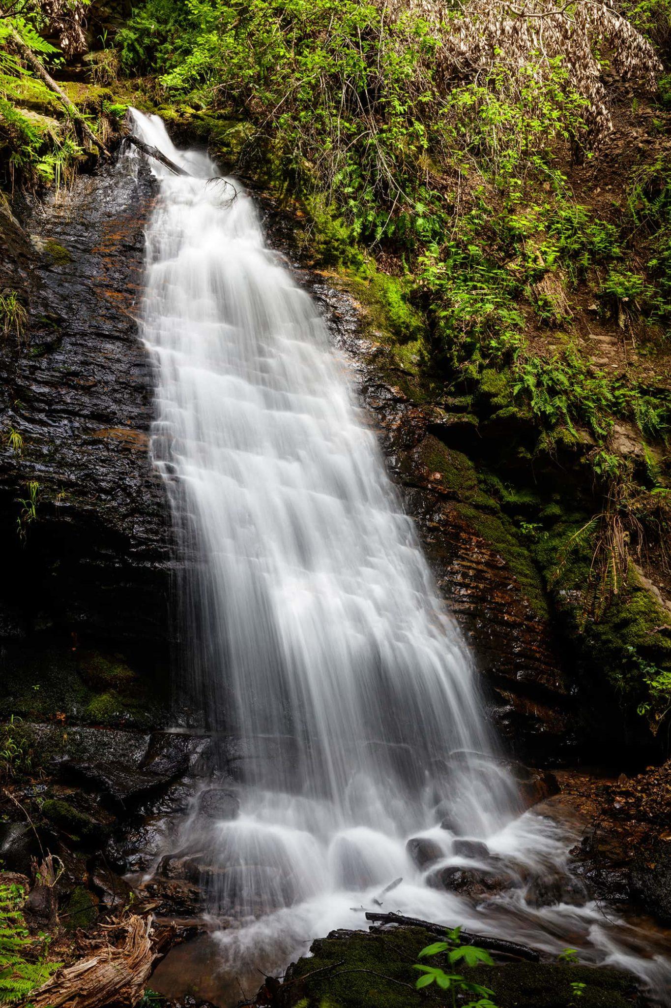 Cascade_Creek_Waterfall_1-5-web-1365x2048.jpg