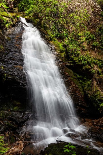 Cascade_Creek_Waterfall_1-5-web-1365x2048.jpg