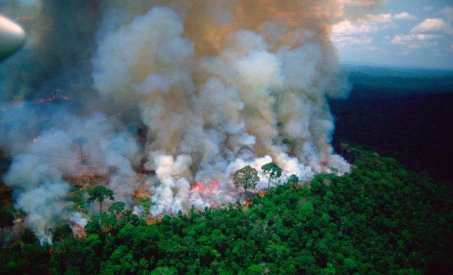 Amazong-Rainforest-Emmanuel-MacronTwitter-660x400