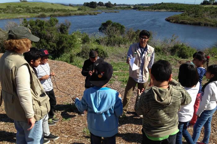 wetland-stewards-overview
